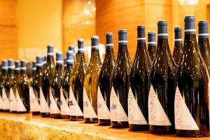 bottles of red wine all lined up